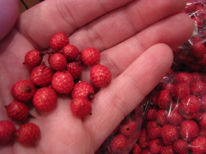 Our new Canella berries