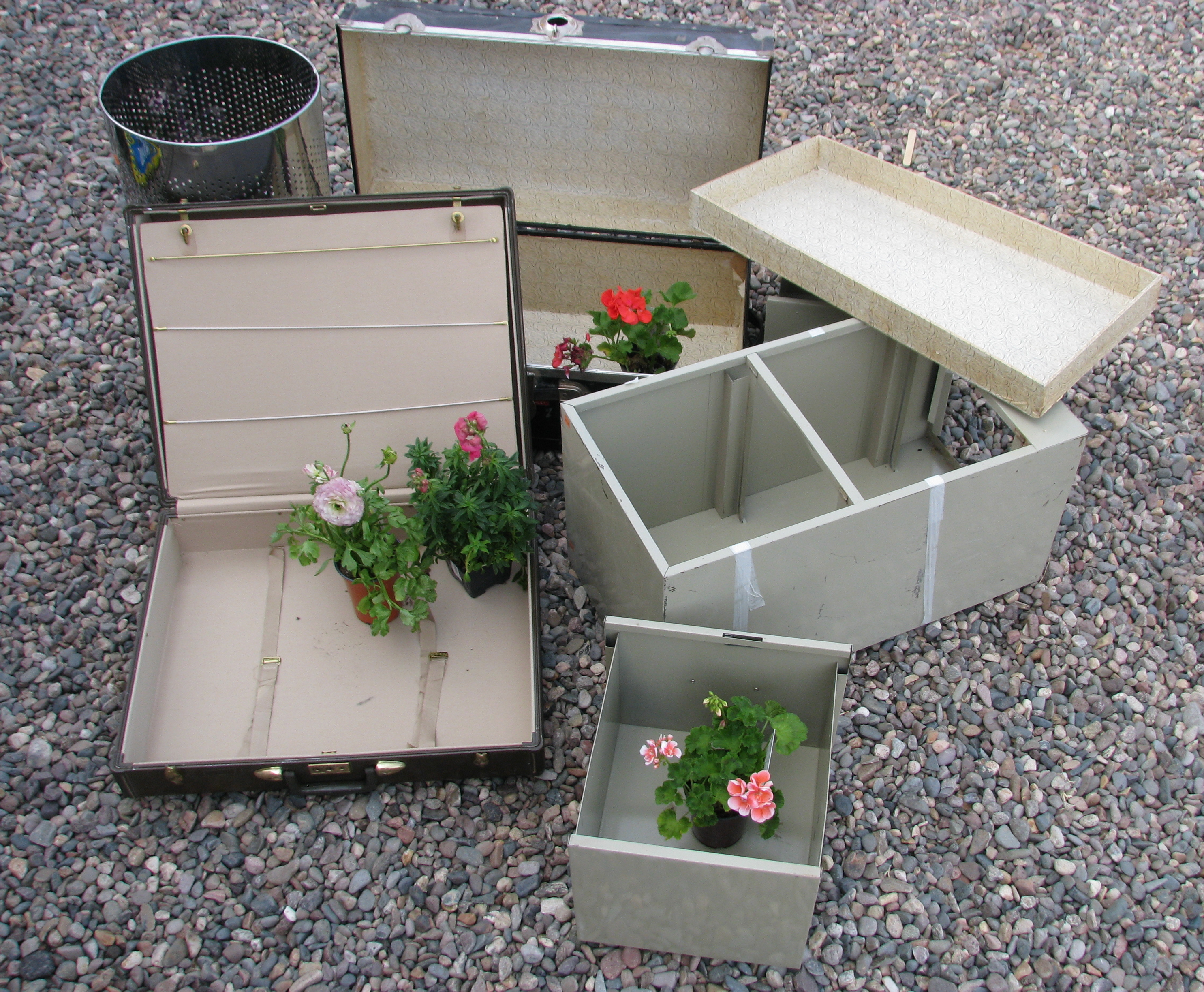 Recycled garden containers spice grove designs - Recycled containers for gardening ...