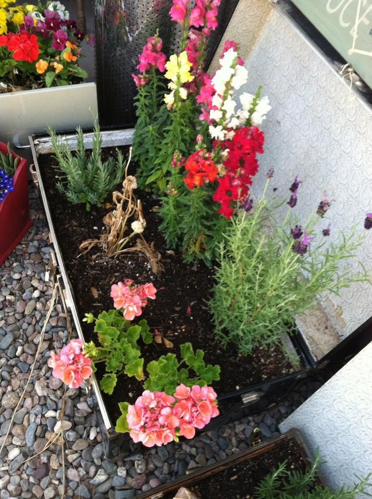 Footlocker of Flowers and Lavender