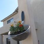 colander planter hung