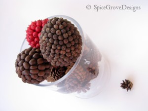 Closeup pinecones and spice balls