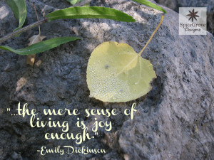 Living is Joy