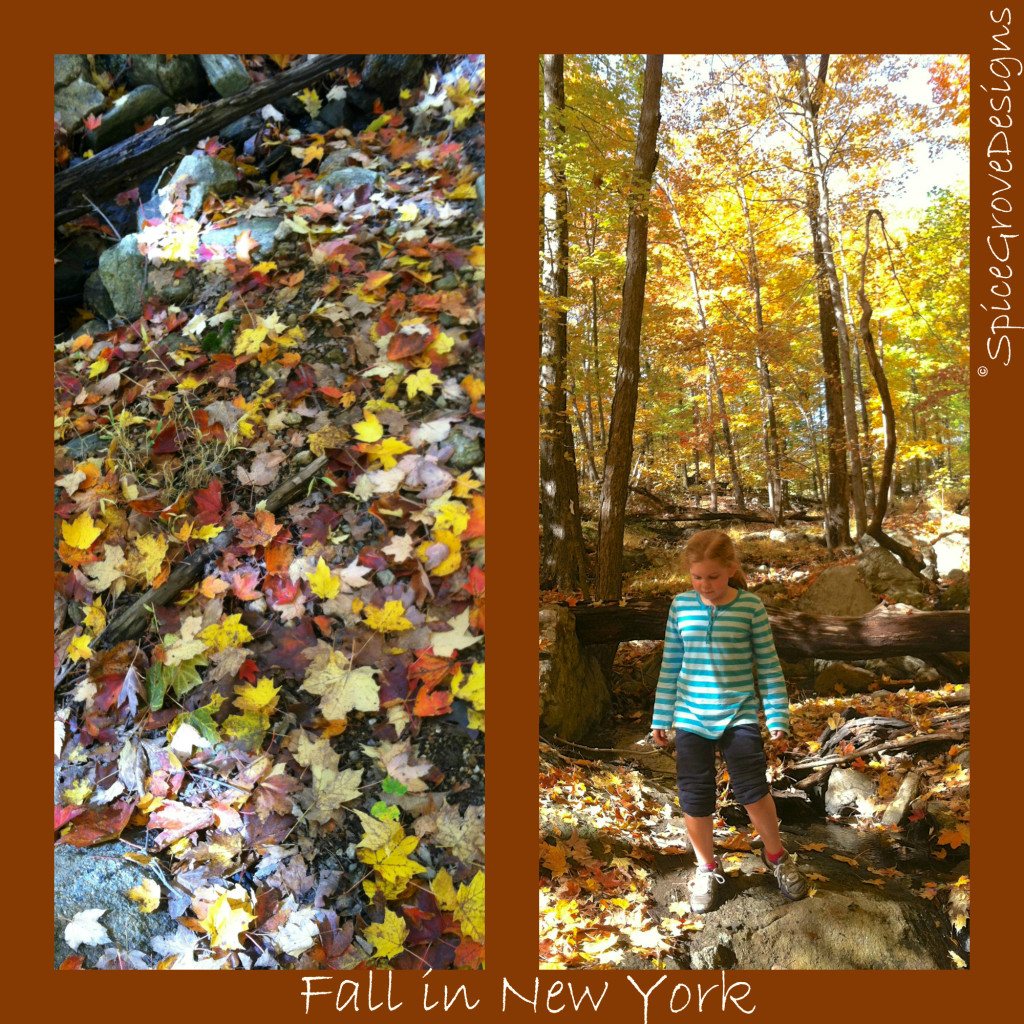 Fall in NY collage