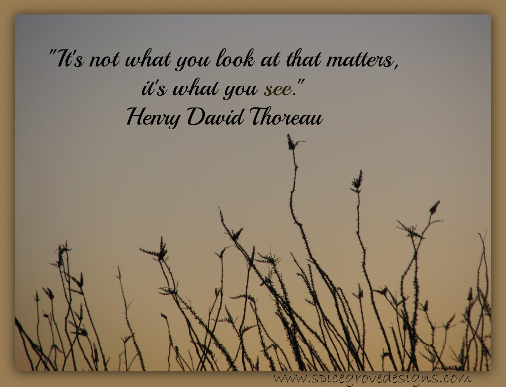 ocotillo birds with Thoreau quote