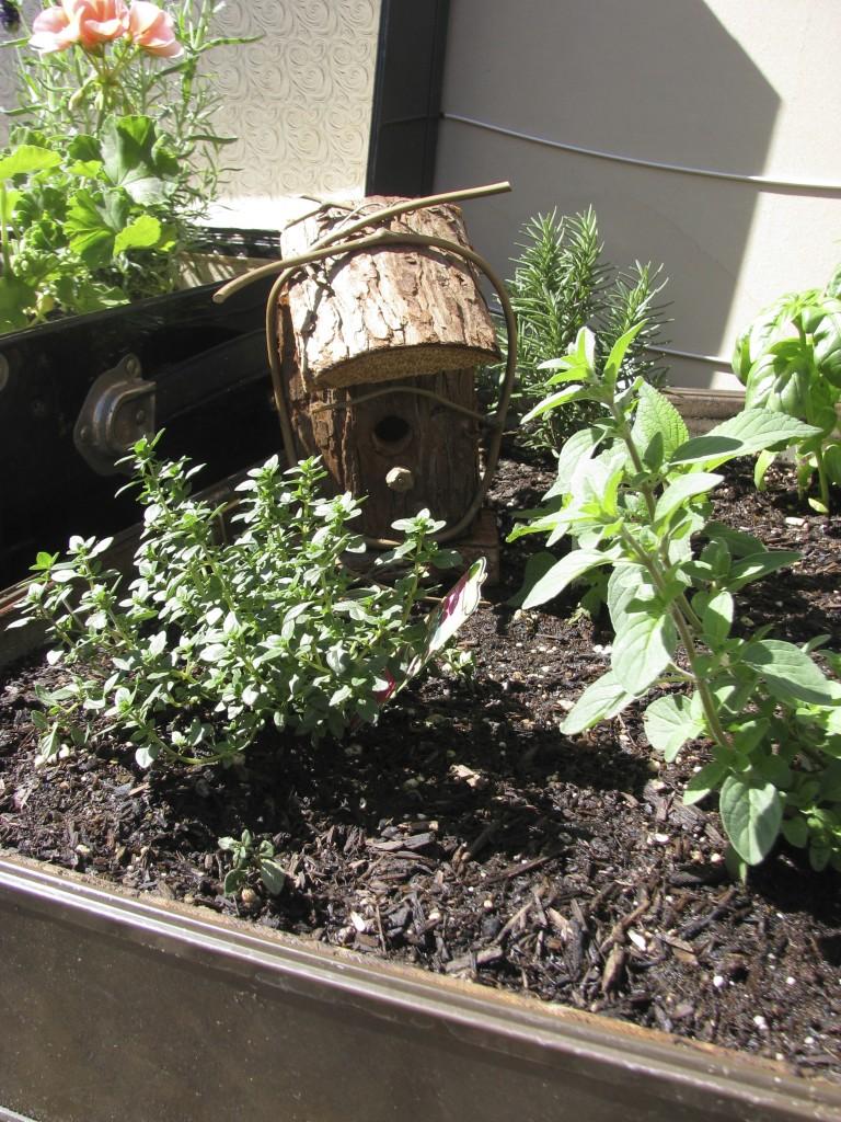 birdhouse in herb garden