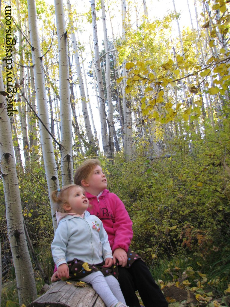 Our girls in my beloved Aspen trees....